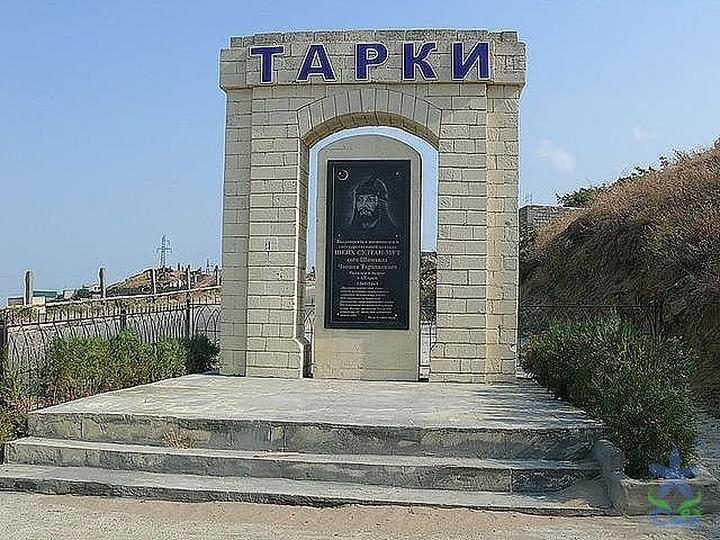 Лидеров таркинских поселков после драки в мэрии поместили под домашний арест