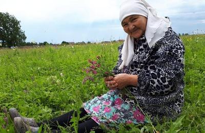 Татарская бабушка из Башкирии стала вайнером