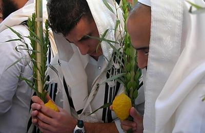 Евреи начали отмечать иудейский праздник Суккот