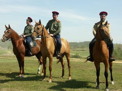 На Ставрополье будут судить ранивших казака уроженцев Ингушетии