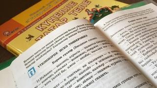 Добровольность изучения языков в школах Татарстана проверят до 27 октября
