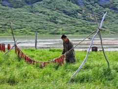 Власти Камчатки: Льготы общин при изменении Перечня территорий традиционной деятельности сохранятся