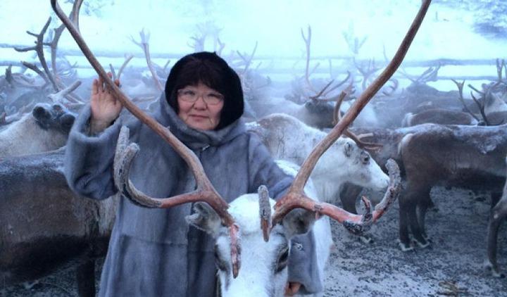 Парламентарии Якутии уверены в неизбежности наказания для стрелявших в оленей