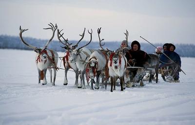 В ООН расскажут об опыте предпринимательства коренных народов в российских регионах
