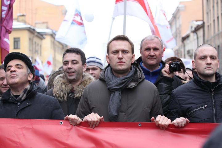 Адвокат Поткина: Навальный и Удальцов могут стать свидетелями по делу об экстремизме