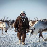 Студенты северных регионов России посоревнуются в возведении чумов на Arctic Skills