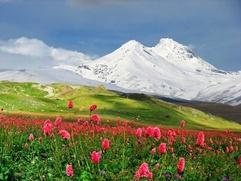 Юбилей возрождения карачаевского народа отметят восхождением на Эльбрус и конным переходом