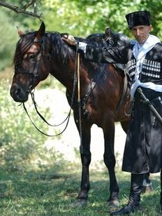 Фестиваль северокавказских всадников пройдет на границе Чечни и Дагестана