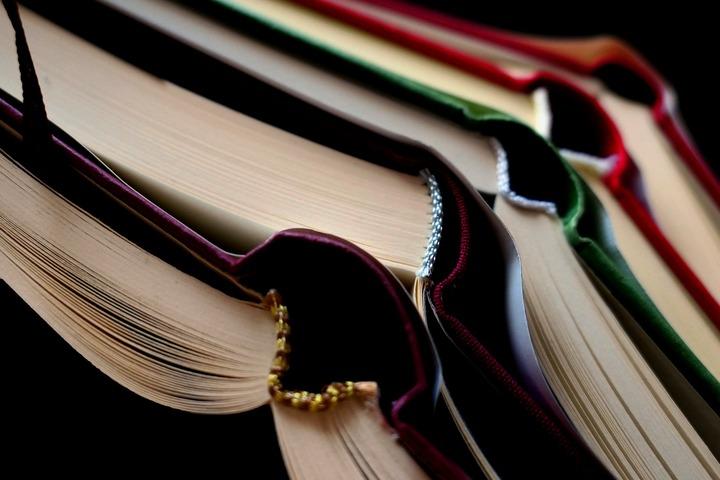 Проектный офис развития Арктики разработает грамматический справочник энецкого языка