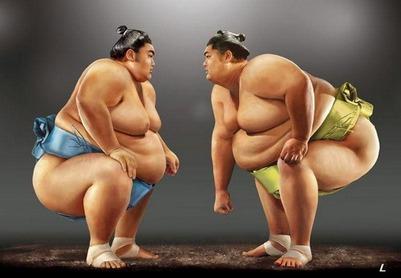 В ёхорный флешмоб вплетутся японские сумоисты