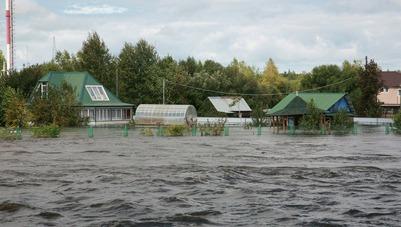 Президент Ассоциации КМНСС и ДВ призвал оказать помощь пострадавшим от паводка коренным народам