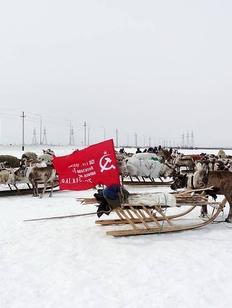 """""""Бессмертный аргиш"""" в честь оленно-транспортных батальонов пройдет на Ямале"""