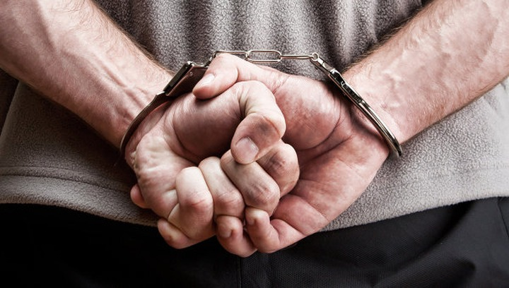 Националиста Демушкина арестовали за демонстрацию нацистской атрибутики
