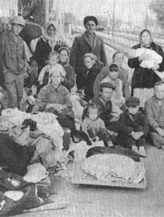 deportation of meskhetian turks essay