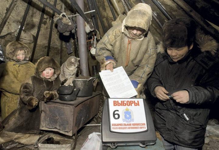 Тундровики Ямала приступили к голосованию на выборах