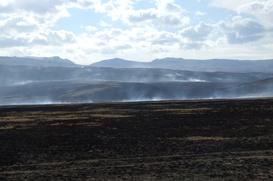 """Эксперты ЮНЕСКО не заметили следов """"Газпрома"""" на Укоке, защитники плато недоумевают"""