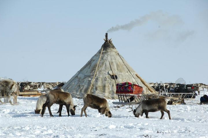 Госдума не поддержала выделение подсобных участков общинам коренных народов