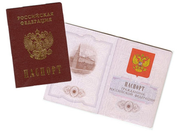Правительство России упростит получение гражданства русскоязычными иностранцами