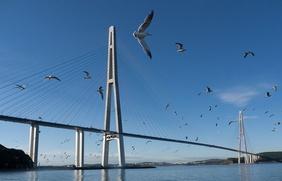 Дальний Восток и Севастополь победили в конкурсе на символы для новых купюр