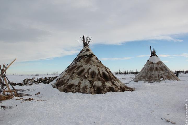 Коренные народы Ямала будут фотографировать загадочные явления для помощи ученым