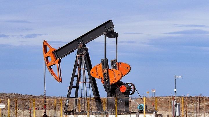 Коренные народы Таймыра попросили перенести строительство нефтяного терминала