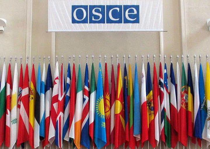 Представитель ОБСЕ раскритиковала российский антиэкстремистский закон