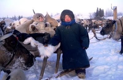 Старожилы российской Арктики