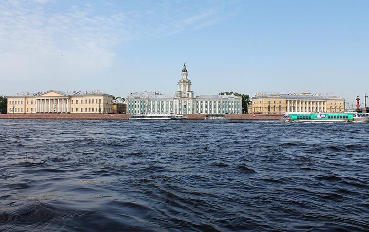 Жертвоприношение барана на азербайджанской свадьбе в Петербурге назвали инсценировкой