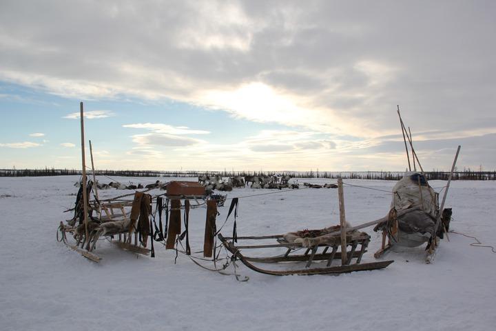 Новую программу развития Арктики примут в сентябре 2020 года