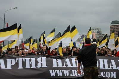 Демушкина предупредили об ответственности за народный сход