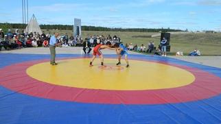 Путин: Наши национальные виды спорта должны пробиваться в олимпийские дисциплины