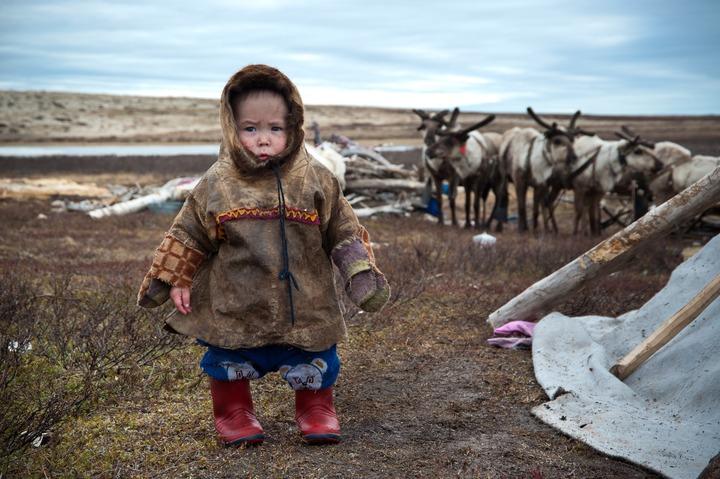 Арктические регионы России внесли 15 млн рублей в Фонд поддержки КМНС