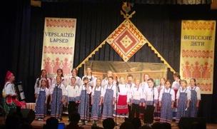 Видеоэкскурсии по вепсским деревням представили на языковом конкурсе в Винницах