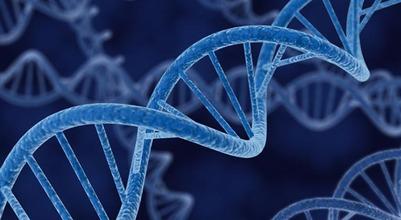 Ученые нашли у чукчей и коряков ген-провокатор синдрома внезапной детской смерти