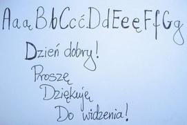 Польская диаспора проведет всероссийский диктант на национальном языке