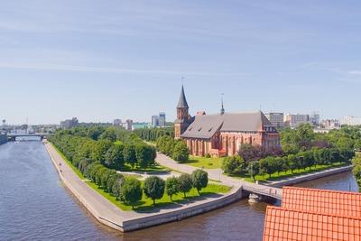 Еврейская община Калининграда получила разрешение на строительство синагоги