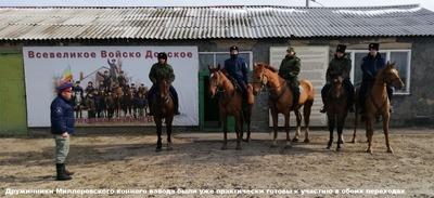 Донские казаки отменили два конных похода из-за коронавируса