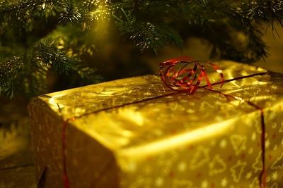 Первый на Кавказе Дом Деда Мороза открылся в Северной Осетии