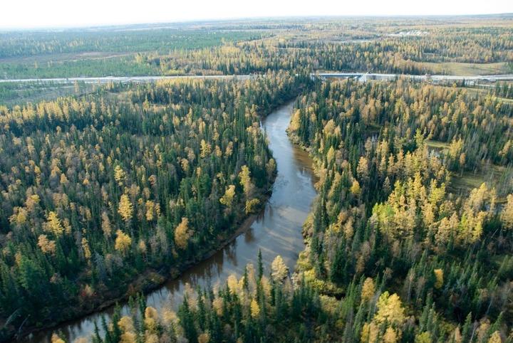 Прокуратура: Власти Югры незаконно предоставили нефтяникам земли коренных народов