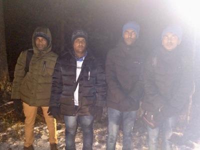 Мигрантов и проводника-мошенника задержали у бутафорской границы в Ленинградской области
