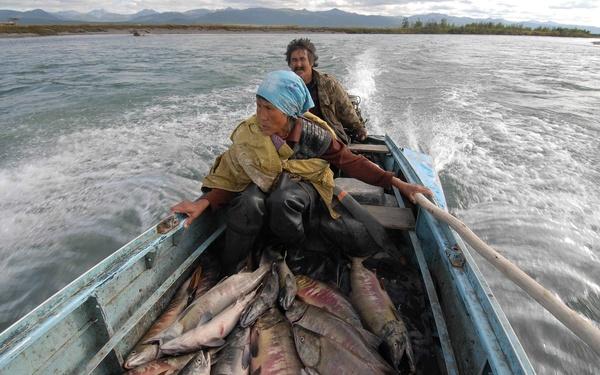 береговая рыбалка на реках севера видео
