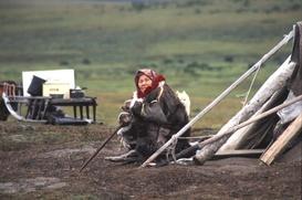 Коренные народы Красноярского края получили гранты на 20 млн рублей