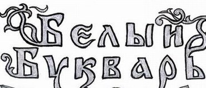 """В Татарстане в суд передано дело о размещении в Интернете неонацистского """"Белого букваря"""""""