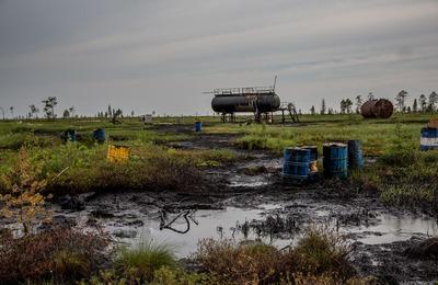 Ученые обнаружили на Севере бактерии, способные очищать землю и воду от нефти