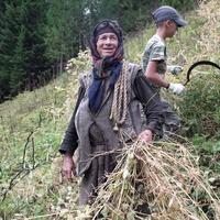 Сибирские староверы научили китайских военных выживать в тайге