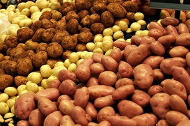 Ученые вырастят картофель на Крайнем Севере