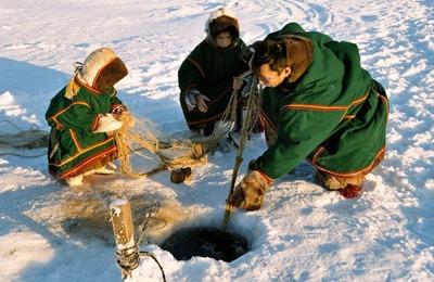 Аборигенам частично запретят ловить рыбу сетями в новом заказнике на Ямале