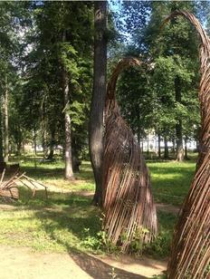 Сад народов России появится в Ижевске в конце августа
