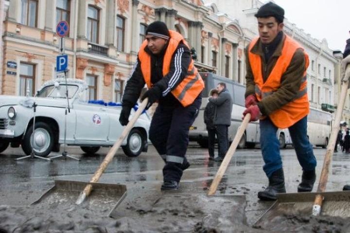 Властям Москвы не удалось заменить дворников-мигрантов россиянами
