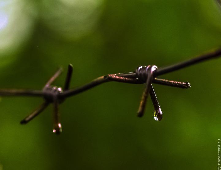 В Удмуртии мужчина получил срок за отрицание Холокоста